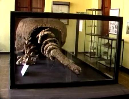 199 museo dean funes 2