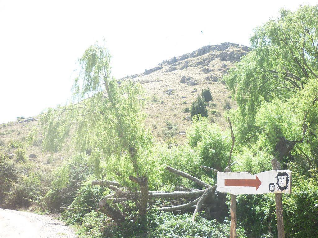 275 camino ascochinga la cumbre 05